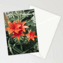 Pop of Orange Stationery Cards