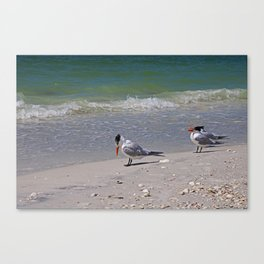Hey...I Can See My Toes Canvas Print