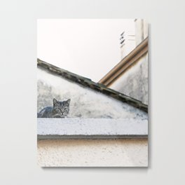 Cat on the Roof Metal Print