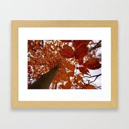 PA Landscape Framed Art Print