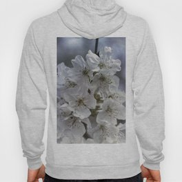white flowers on the branches in spring Hoody