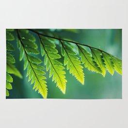 Shades of Green Rug