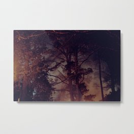 lit up forest Metal Print