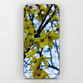 Yellow Flowers - Spring Arrives iPhone Skin