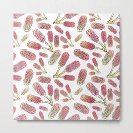 Australian Native Flowers - Beehive Ginger Metal Print