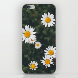 Daze-y Daisies iPhone Skin