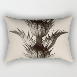 Karl Blossfeldt, Acanthus mollis Rectangular Pillow