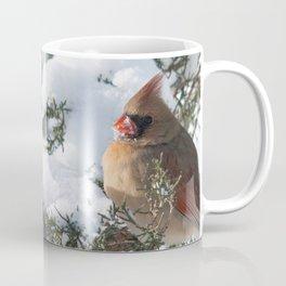 Sunny Winter Cardinals (square) Coffee Mug