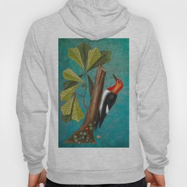 Red Headed Woodpecker with Oak, Natural History and Botanical collage Hoody