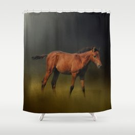 Copper Colt In The Moonlight Shower Curtain