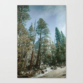 The top of the John Muir Trail, Circa 1977 Canvas Print