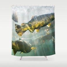 Trout Shower Curtain