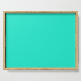Aqua Gift Box Solid Summer Party Color Serving Tray