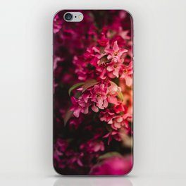 Beauty of Spring I iPhone Skin