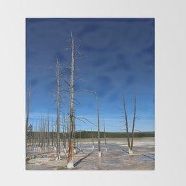Lodgepole Pines In Geyser Basin Throw Blanket