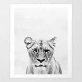 Lioness Peekaboo print Art Print