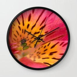 Peruvian Lily Macro Wall Clock