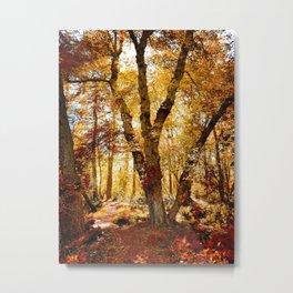 Old tree bridge in Fall Metal Print