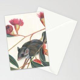 Australian Possum Glider Botanic Art Stationery Cards