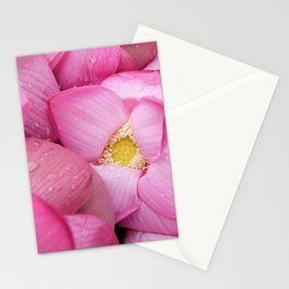 pink petals #society6 #decor #buyart Stationery Cards