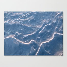 A Conversation with Snow Canvas Print