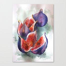 Fig Watercolor Fruits Canvas Print