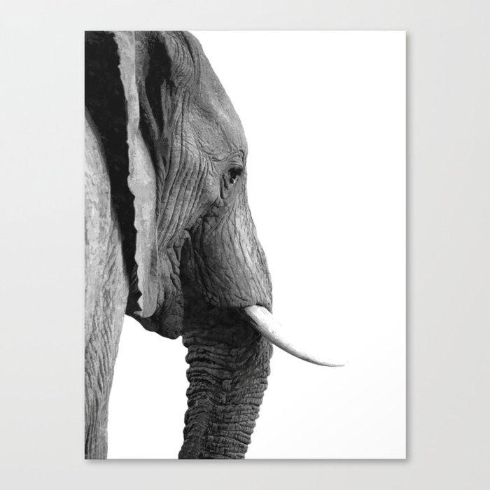 Black and white elephant portrait Canvas Print