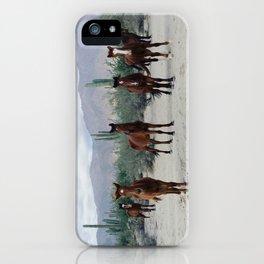 Bahía de los Ángeles Wild Horses iPhone Case