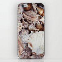 seashell iPhone & iPod Skins featuring seashell by Pink Revenge