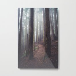 Foggy Forest Path Metal Print