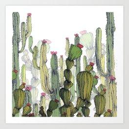 Dry cactus Art Print