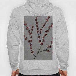 Springtree Hoody