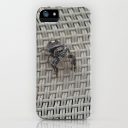 Metaphid Jumping Spider 2 iPhone Case