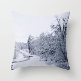 In the Dead of Winter Throw Pillow