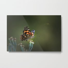 An American Lady Buttefly Metal Print