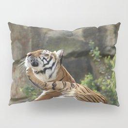 Chin-scratching tiger Pillow Sham