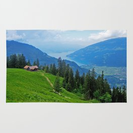 Above Interlaken Rug