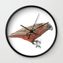 New Zealand parrot, the Kaka Wall Clock