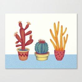 Cacti Canvas Print