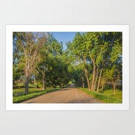 Country Road, North Dakota 6 Art Print