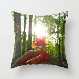 Nature Rays Throw Pillow