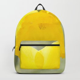 I wandered lonely etc. etc. Backpack