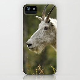 Age and Wisdom in a Mountain Goat iPhone Case