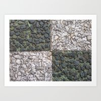 Abstracts in Nature Series -- Mosaic Paving Squares Art Print