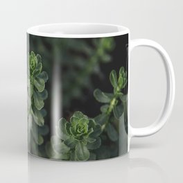 wild succulents Coffee Mug
