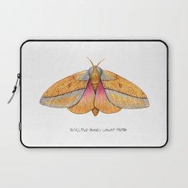 Bisected Honey Locust Moth (Sphingicampa bisecta) Laptop Sleeve