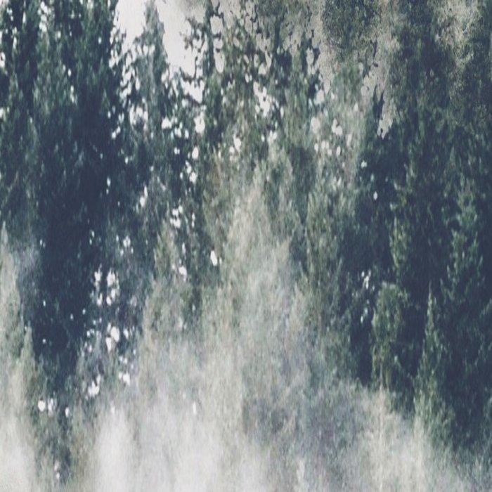 Abstract Forest Fog Leggings