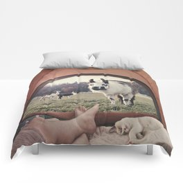 ALPACA  - CAMPING WITH FRIENDS Comforters