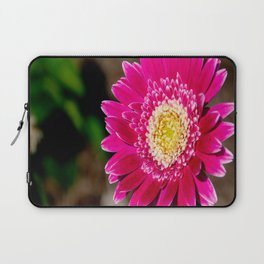 Garvinea Sweet Fiesta Gerber Daisy Laptop Sleeve