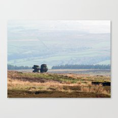 Twigg and Tibb Canvas Print
